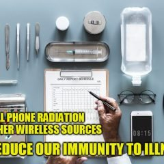 Chiropractic / Natural Healing Office Replaces WiFi with Hardwired Internet, Has Visitors Leave Cell Phones at the Door – Activist Post